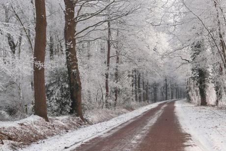 """Sneeuw """"weg"""""""