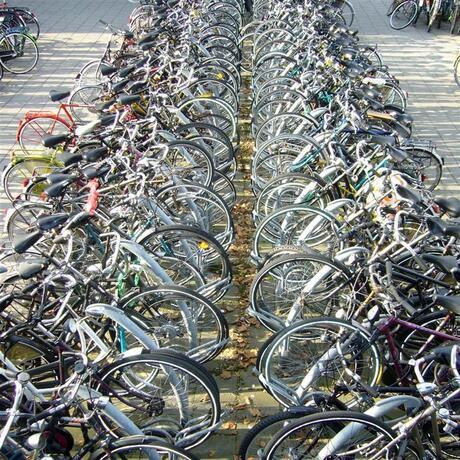 Fietsen in Delft