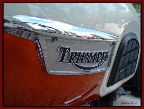 Triump tank reflecties