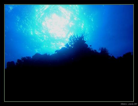 Onderwater Landschap