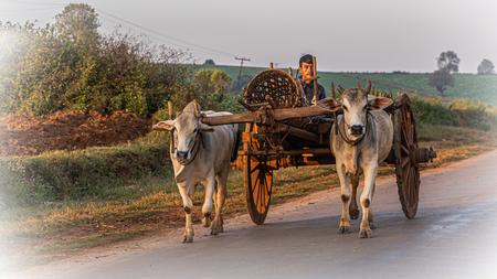 back in time - nu zeker...in myanmar - foto door Aaddevogel op 07-02-2021 - deze foto bevat: mensen, kleur, natuur, vakantie, landschap, cultuur, straatfotografie, azie, geloof, reisfotografie, myanmar