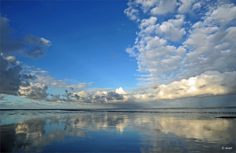 De waddenzee, werelderfgoed