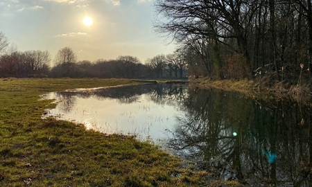 Spring2 - Klein riviertje met beverdammen in Limburg. Na een prachtige dag dwalen we tijdens het gouden uurtje door het natuurgebied. Einde van een schitterend - foto door Camfred op 06-03-2021 - deze foto bevat: lucht, lente, avond, zonsondergang, landschap, tegenlicht, rivier