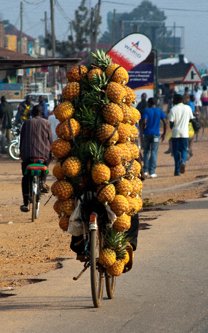 ananas - Rijdend gemaakt in Uganda. Hij kwam vanaf een hoge heuvel en we zagen hem aankomen. Meerdere foto's gemaakt, maar deze is het geworden, duidelijk gen - foto door gipukan op 23-09-2019 - deze foto bevat: fiets, snel, wonen, ananas, uganda