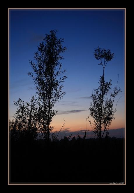 Zonsondergangssilhouet