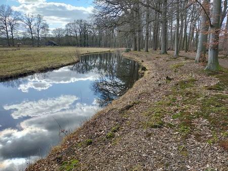 Lucht spiegeling.. - Luchtweerspiegeling in de beek komt nu mooi uit omdat een zonnetje en een blauwe wolkenlucht meewerkt. - foto door AdtenHoopen op 08-03-2021 - deze foto bevat: lucht