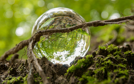natuur door een kristallen bol