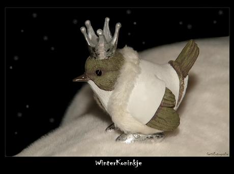 WinterKoninkje*