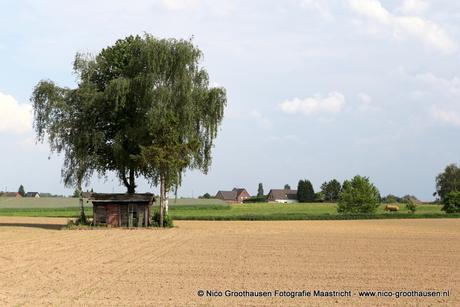 Een houten huisje in een uitgestrekt Limburgs landschap