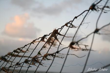 WadMoai - - - foto door MasterMuller op 04-10-2019 - deze foto bevat: lucht, wolken, zon, natuur, landschap, kust, wad