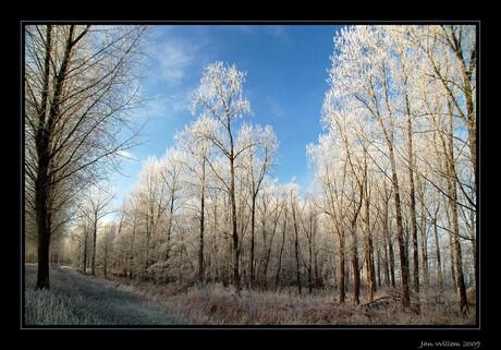 Winterwereld - 1