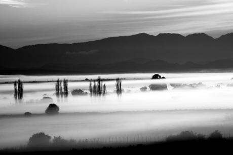 Flarden mist