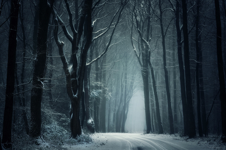 Dark Winter Days.