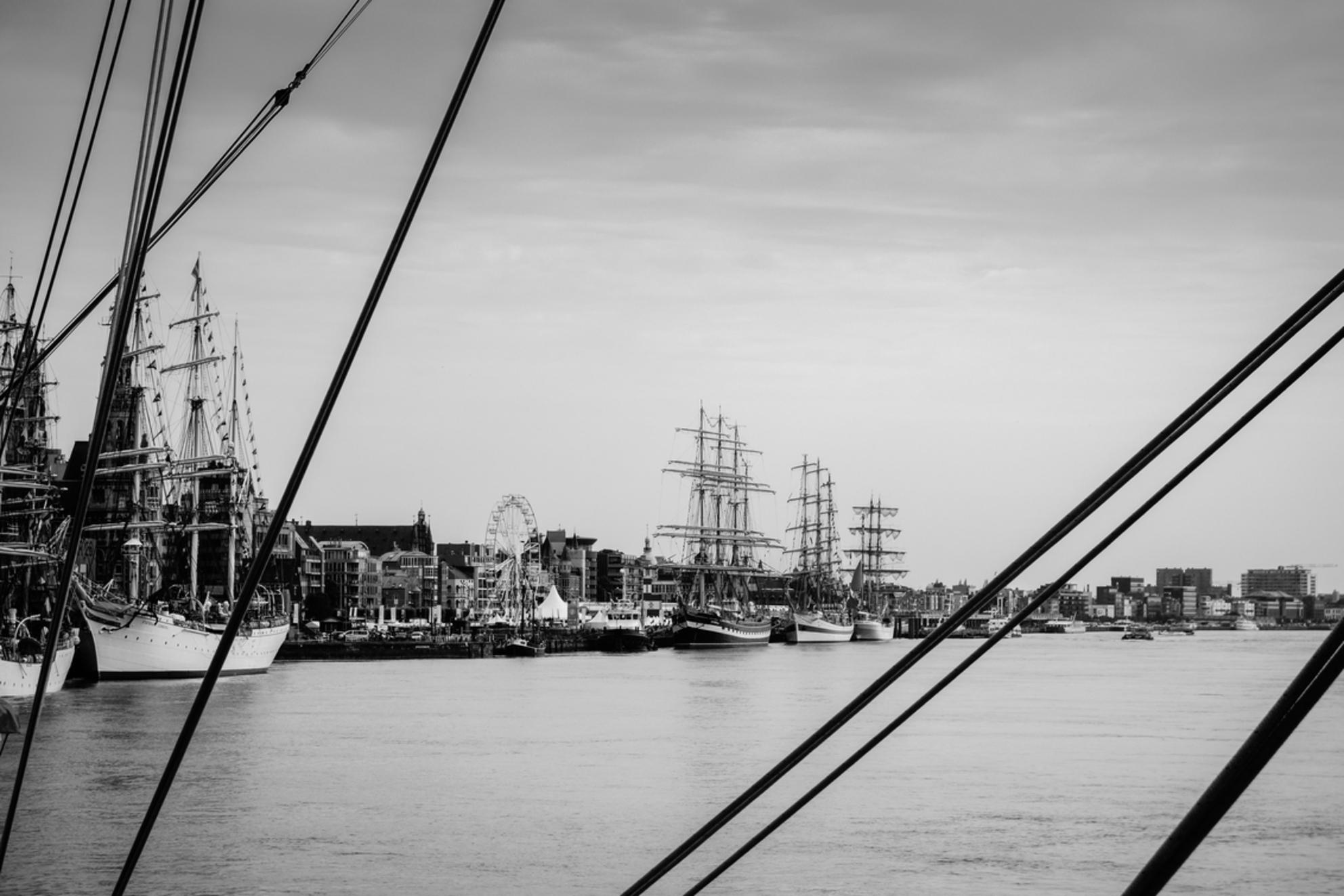 """Antwerp - Tall ship Races - Afgelopen waren de boten van de """"Tall Ship races 2016"""" aangemeerd in Antwerpen (vergelijkbaar met Sail maar kleiner). - foto door Krulkoos op 13-07-2016 - deze foto bevat: zee, lijnen, touw, zeilboot, boten, masten, sail, antwerpen, zwartwit, marine, zeilen, belgie, varen, kabels, kabel, touwen, zeilboten, maritiem, schelde, antwerp, Tall Ship, hoog contrast, rx100, maurice weststrate - Deze foto mag gebruikt worden in een Zoom.nl publicatie"""