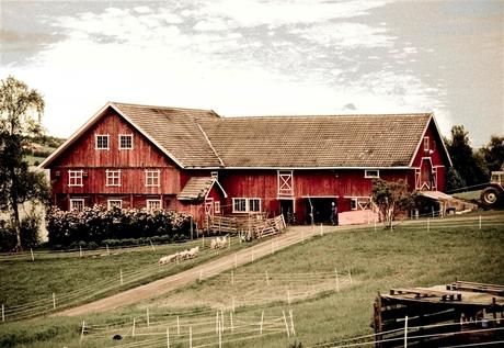 BOERDERIJ (noorwegen)