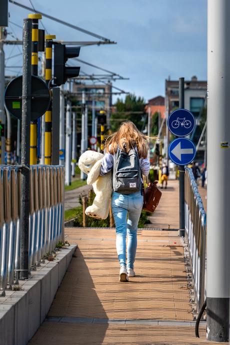 Teddybear walking