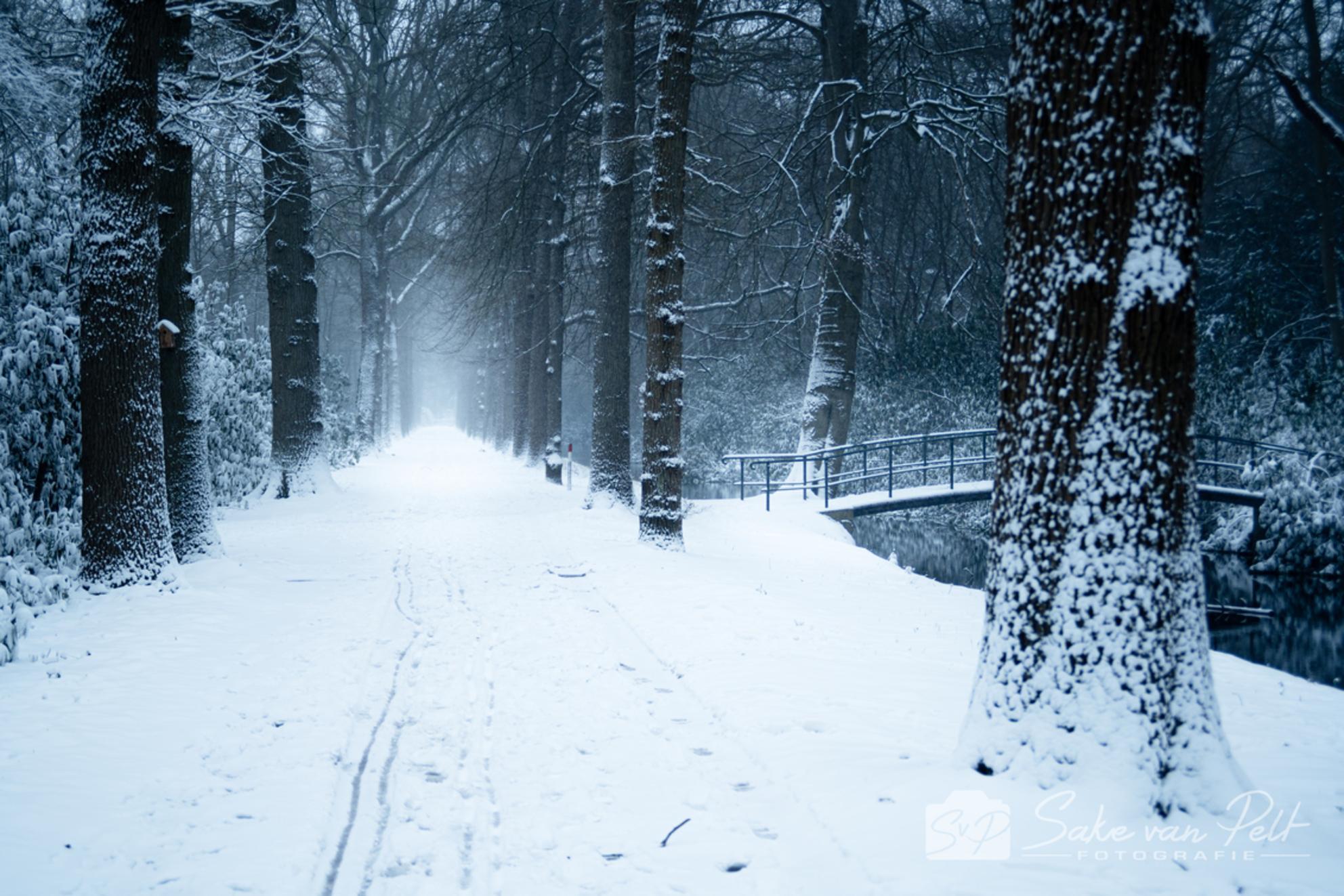 Sneeuwbrug - Oh wat is sneeuw toch fantastisch! Je waant je echt in een andere wereld! Met onze zoon goed ingepakt, met een warme kruik in zijn voetenzak en de re - foto door Sake-van-Pelt op 09-02-2021 - deze foto bevat: lucht, wolken, boom, water, natuur, druppel, licht, sneeuw, winter, sporen, ijs, landschap, mist, bos, beukenlaan, brug, beuk, nederland, weg, kou, bruggetje, laan, horsten, sneeuwstorm, beuken