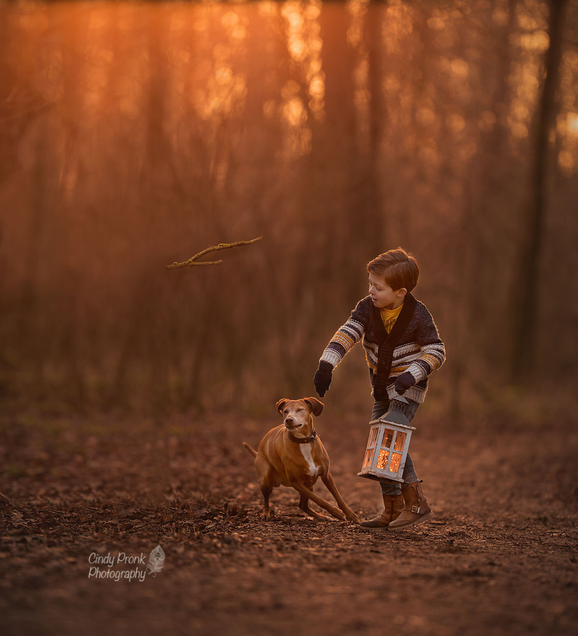 'Catch Resah...' - - - foto door cinnerp op 19-01-2018 - deze foto bevat: zonsondergang, portret, hond, kind, jongen, natuurlijk licht, gouden uur, goudenuur