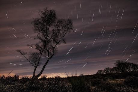 Written in the stars...