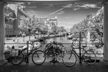 Groeten uit Leiden