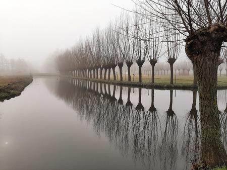 Mist - Op een mistige ochtend in Capelle. - foto door speed-560 op 05-03-2021 - deze foto bevat: mist