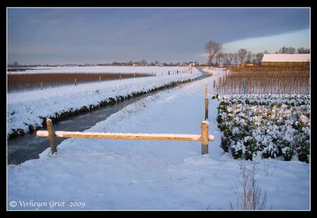 Winters landschap2