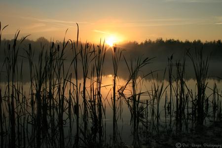Ochtendstond heeft goud in de mond - Prachtige zon's opkomst in ochtend gloren. ik was vroeg uit de veren om een lekker wandelingetje te maken op mijn vakantie. toen ik plots aan het e - foto door PietBerger op 17-11-2007 - deze foto bevat: zon, meer, opkomst, zon