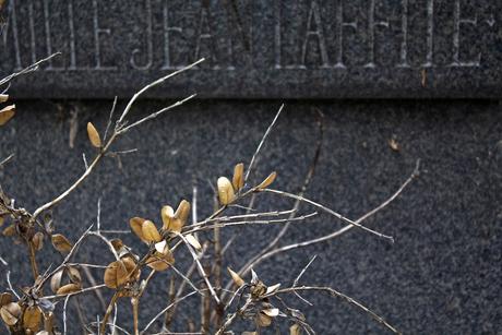 Begraafplaats van Monmartre 6