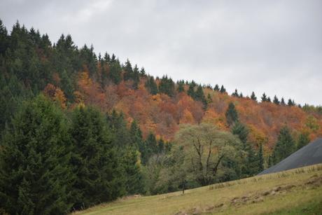 Herfst i Winterberg