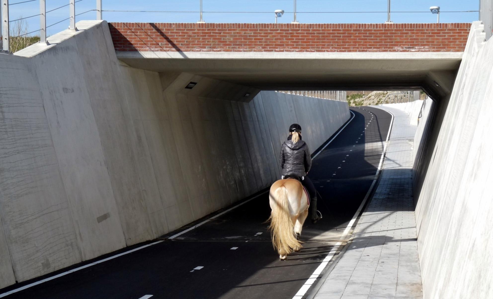 P1370810 Vlotwateringgebied nr20 28 feb 2016 - Hallo Zoomers . GROOT kijken en even lezen . Voor wij weer opstappen  om het laatste stukje te verkennen bij het Vlotwatering gebied laat ik eerst ev - foto door jmdries op 02-11-2016 - deze foto bevat: paard, architectuur, kust, polder, fietstunnel