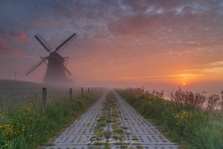 Coloured Sunrise