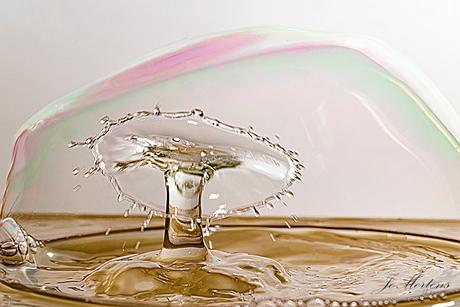 druppel foto met zeep bel