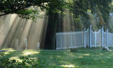zonnestralen - Zonnestralen gevangen op het landgoed Dickninge te De Wijk - foto door dyjaf op 23-09-2017 - deze foto bevat: zonnestralen, dickninge, de Wijk