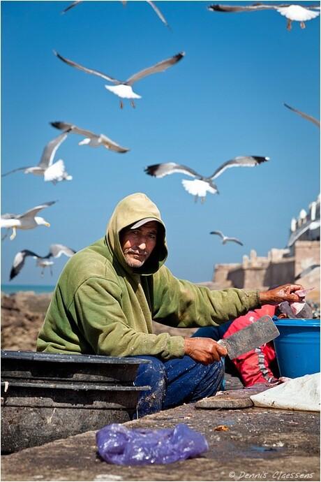 Fisherman in Essaouira