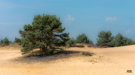 Drenthe Wateren
