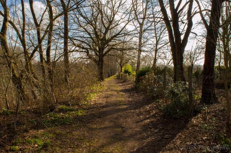 Het pad naast Fort van Duffel