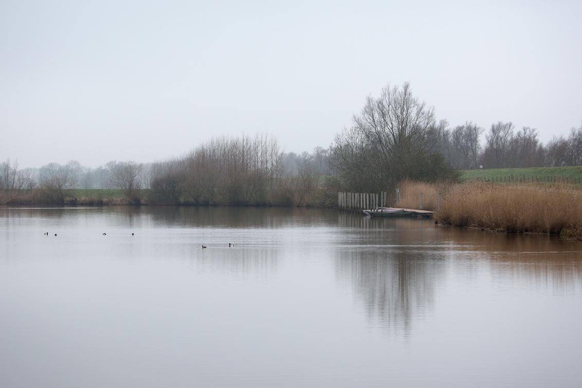 landschap - Koud en nat vanmorgen. - foto door annaseb op 27-02-2021 - deze foto bevat: natuur, spiegeling, landschap