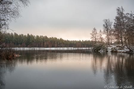 Winter sunrise Tevernerheide - Winter in de Teverner heide.  Bedankt, voor jullie fijne reacties. Groet, John. - foto door JvandeGazelle op 29-01-2021 - deze foto bevat: lucht, wolken, water, natuur, licht, sneeuw, winter, spiegeling, landschap, heide, bos, tegenlicht, zonsopkomst, bomen, ven, morgenrood, sfeervol, john van de gazelle, tevernerheide