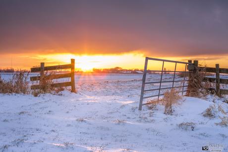 Winterse zonsopkomst in Haastrecht