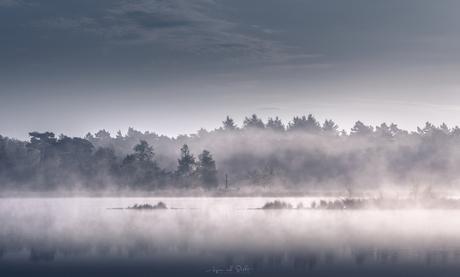 Fog Window