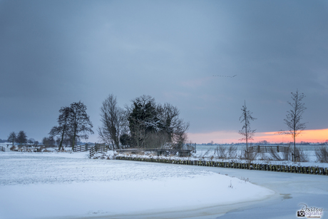 Winterlandschap in de polder