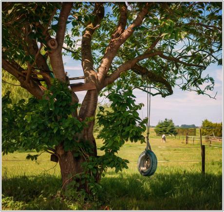 Wanna Swing?
