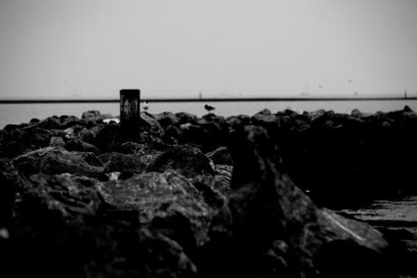 zwarte pier