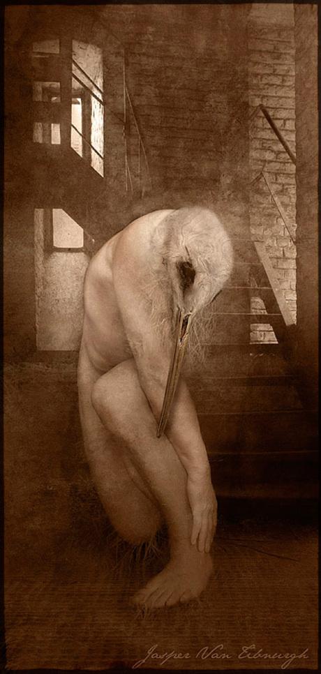 Sad Birdman