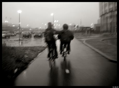 fietsen in Rijnmond