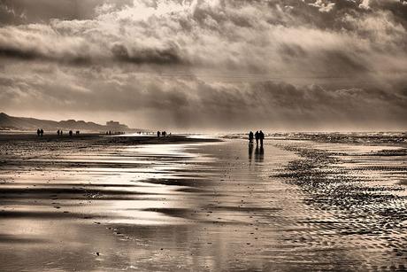 Strand 2014.jpg