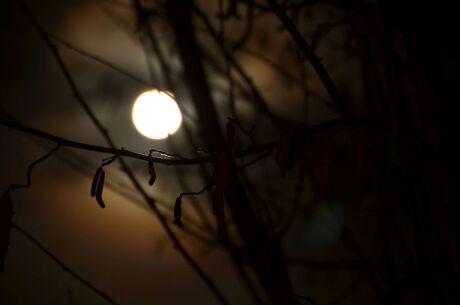 volle maan vannacht