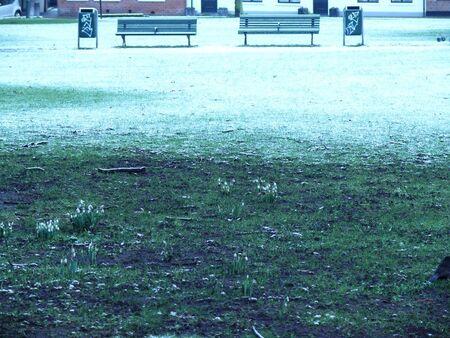 2015-2-bankjes-park - Groningen-stad-centrum. Achter de Martinitoren staan twee bankjes die vertellen vele verhalen. - foto door ecfotograaf op 13-03-2015 - deze foto bevat: sneeuw, urban, straatfotografie, horizontaal, details, bankjes, egaal