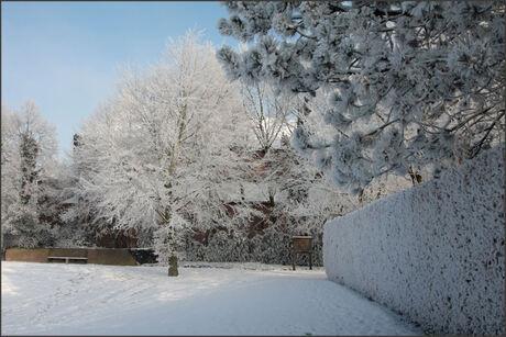 nog maar een mooi sneeuw plaatje