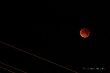 Maximale maaneclips bij volle maan